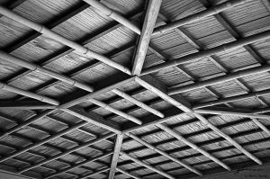 Shelter roof